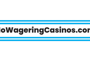 No Wagering Casinos large logo